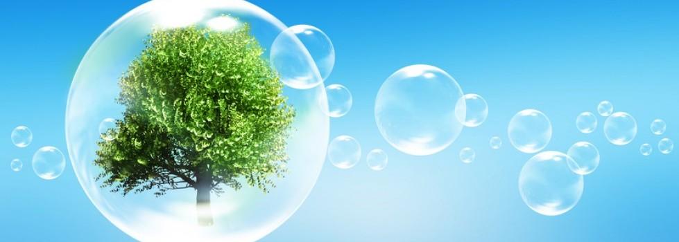 Sustainable Energy The Global Alliance
